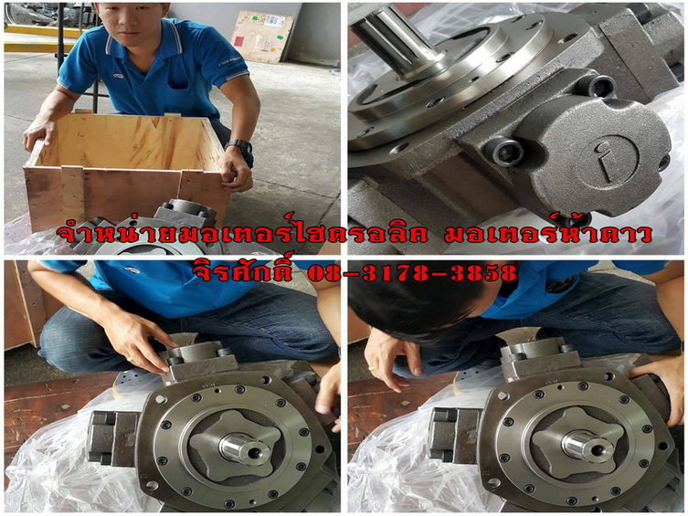 จำหน่าย pump  Hydraulic ,ไส้ปั๊มและรับ over haul pump Hydraulic